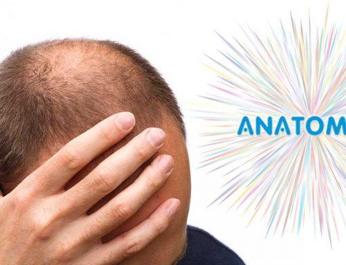 Ist Haarausfall Erblich Bedingt?